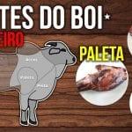 Cortes do Boi - Desossa Dianteiro (Acém, Paleta e Peito) Vamos por Partes