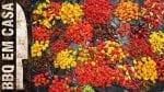 Molho de Pimenta Os 7 Círculos do Inferno - Youpix Rio de Janeiro - BBQ em Casa
