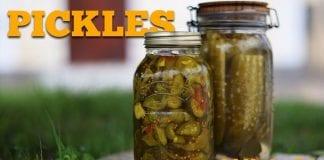 Pickles (Como Fazer Picles Lactofermentado) - Cansei de Ser Chef
